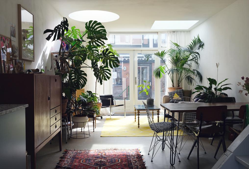 koepels verbouwing delft licht woonhuis huis verbouwen daklicht daglicht vierkant rond vintage industrieel groen duurzaam